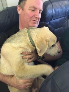 pasajeros del Norte de Canadá con el perro, Mayo el año 2016