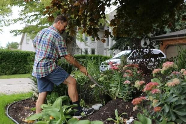 wdr-Matthew Romain-Traffic-Gardening-September 14, 2016