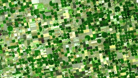 Landsat NASA crop circles Kansas