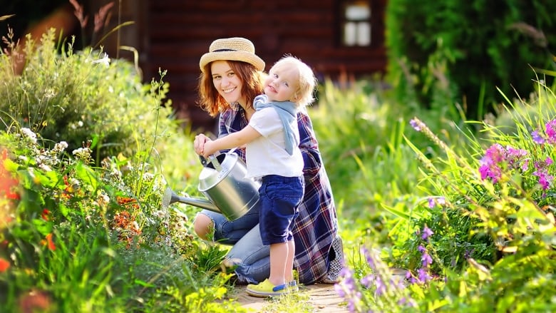 (Credit: iStock/Getty Images) on Gardening  id=93311