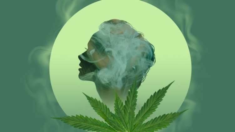 Image result for the effects of marijuana on the brain