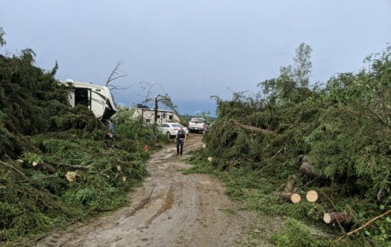 genia aasen storm pics - 'That campground, it's gone': Tornado hits Meadow Lake Provincial Park in Sask.