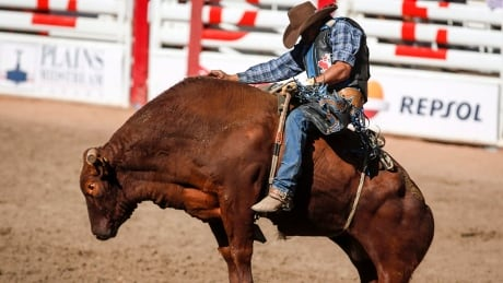 stampede-rodeo