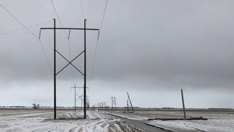 Manitoba Hydro lines down