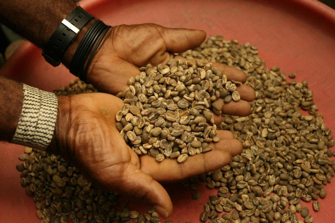Coffee Beans 1414100 1920