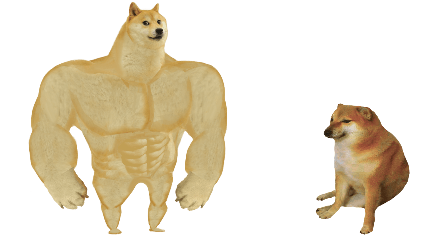 Doge started as a meme before it became a cryptocurrency