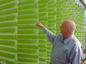 Plant physiologist Glen Kertz believes algae can some day be competitive as a source for biofuel.