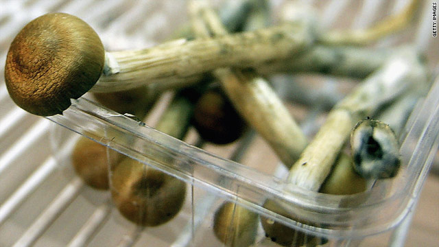 """A new study shows that psilocybin, the active ingredient in """"magic mushrooms,"""" may help terminally ill cancer patients get some relief from anxiety."""