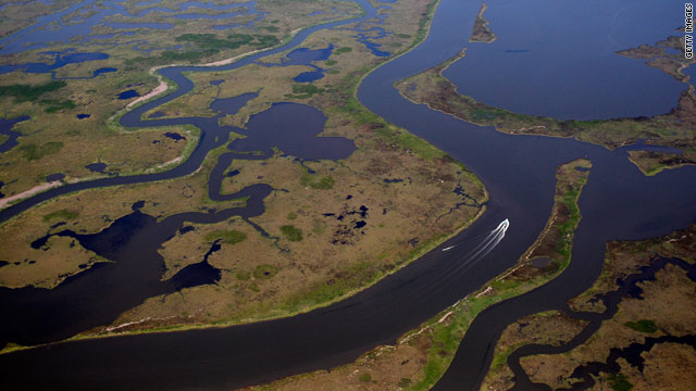 High water levels in Mississippi River helped reduce spill's impact on coast, says Paul Kemp. To continue protection, he believes flow should be increased by Army Corps of Engineers.