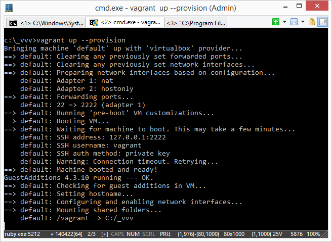 GuestAdditions 4.3.10 running --- OK.