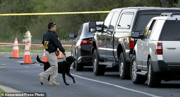 "An agent the Bureau of Alcohol, Tobacco, Firearms and Explosives works with his dog near the site of Sunday's explosion, Monday, March 19, 2018, in Austin, Texas. Fear escalated across Austin on Monday after the fourth bombing this month - this time, a blast that was triggered by a tripwire and demonstrated what police said was a ""higher level of sophistication"" than the package bombs used in the previous attacks. (AP Photo/Eric Gay)"