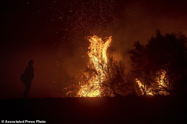 A firefighter oversees a misfire in the fight against the Ranch Fire, part of the Mendocino Complex Fire, on Tuesday, August 7, 2018, near Ladoga, California. (AP Photo / Noah Berger)