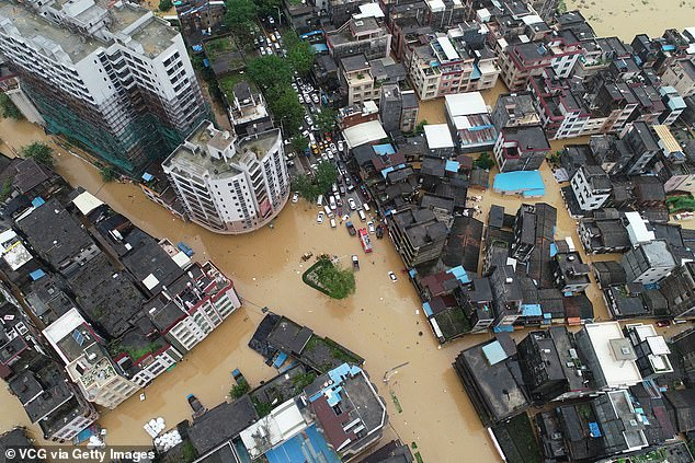 Four people were killed in Guangdong during the storm - three by trees and one by debris