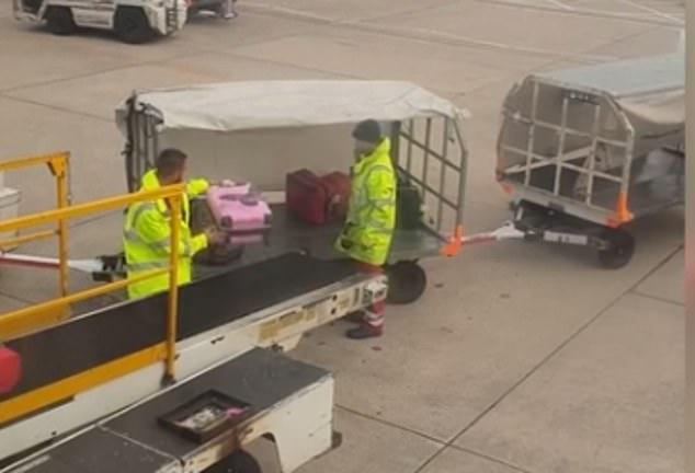 Elizabeth Evans, 28, filmed a baggage handler tossing her pink suitcase onto a trailer