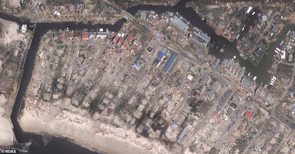 New before and after photos show how Hurricane Michael ...