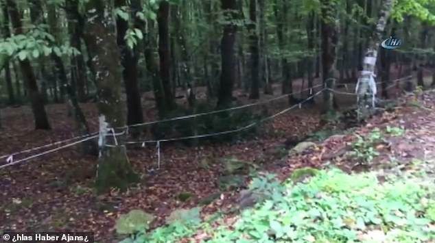 Turkish police are searching Belgrad Forest (pictured) outside Istanbul in the hunt for missing journalist Khashoggi, according to local reports