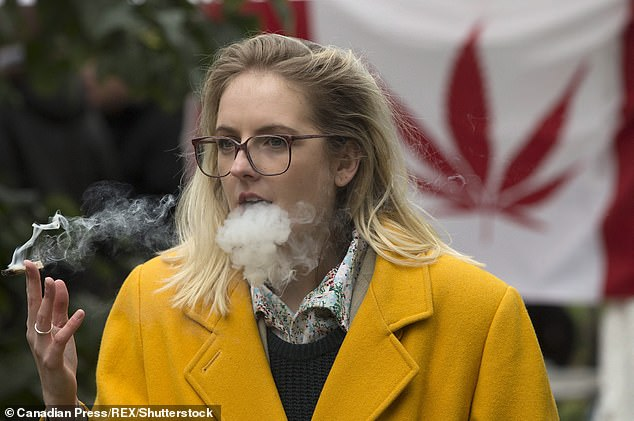 Smoking, eating or vaping marijuana impairs memory and learning up to 24 hours after consumption, a new Canadian study reveals, two days after weed was legalized there (file)