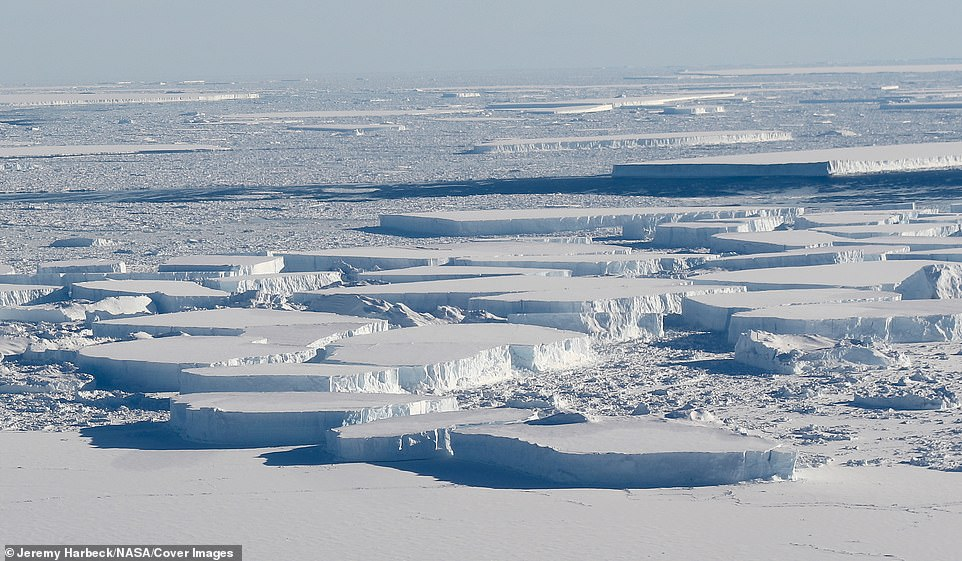 El vuelo vio un 'campo' de grandes icebergs tabulares ubicados entre la plataforma de hielo Larsen C de la Antártida y la isla de hielo A-68, que se desprendió del Larsen C el año pasado, como se vio en una misión Operación IceBridge de la NASA