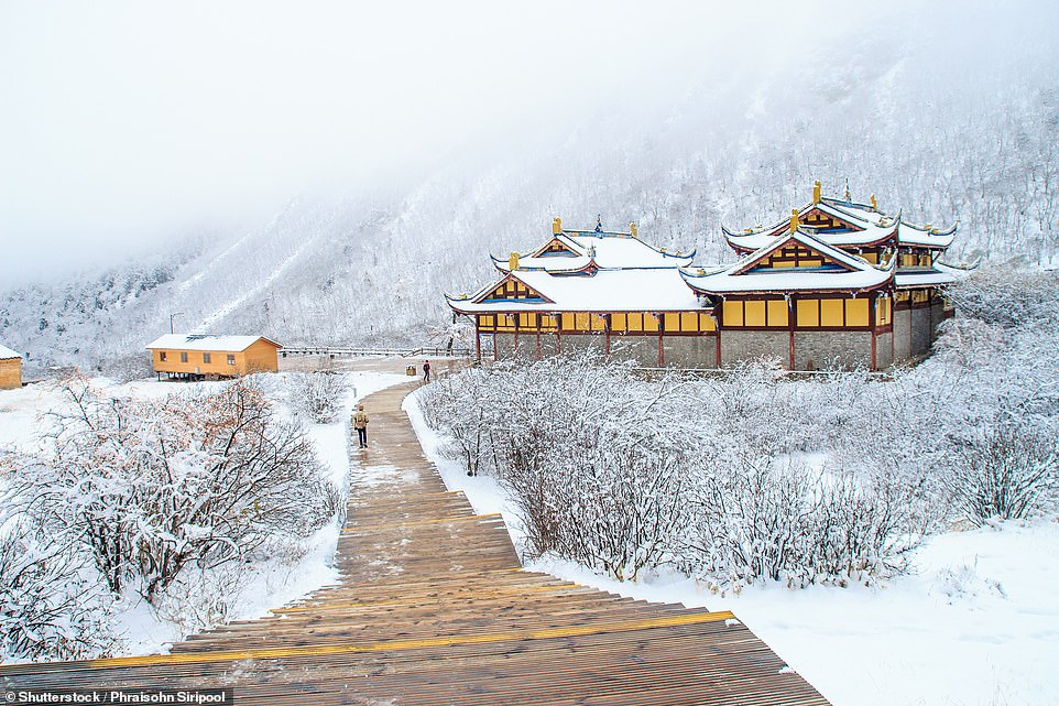 Winters can be tough in northern China, and in cities like Harbin, Beijing and Tianjin it's not uncommon to see snow