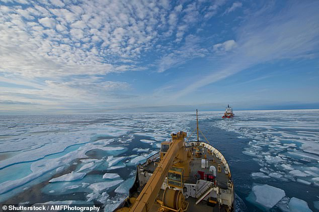 According to scientists, there should be a speed limit in the Arctic Ocean that, according to ship noise, prevents the reproduction of animals (Fig.)