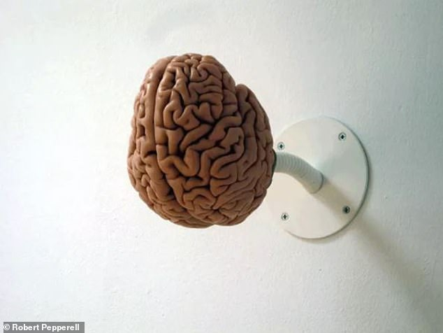 "Is the human brain a squishy digital computer or a sensitive organic energy processing tool? Installation image of ""I am a brain"", 2008. Cast of a human brain made of resin and metal"