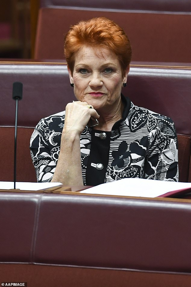 Mr Latham's leadership of the state branch would allow Pauline Hanson (pictured) to remain the federal leader of the party
