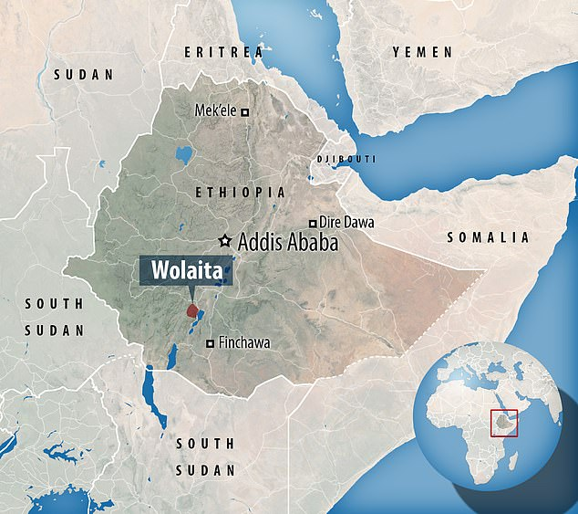 Yellow Fever, a deadly mosquito-borne virus, is believed to have infected 35 people in Ethiopia's southwestern Wolaita zone since an outbreak was triggered when someone contracted the infection in August this year