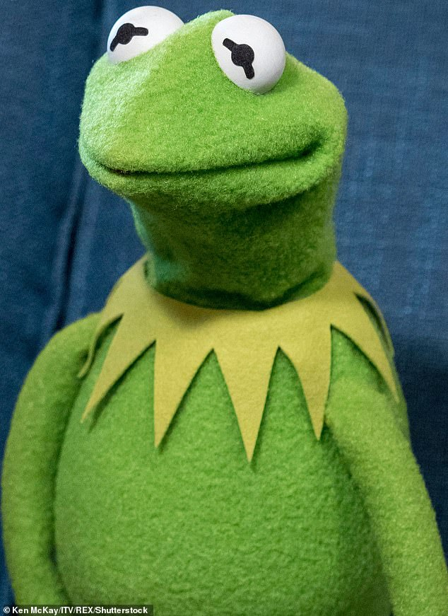 Aussie cricket legend Shane Warne famously referred to outgoing Cricket Australia high performance manager Pat Howard as a muppet - did he mean Kermit?