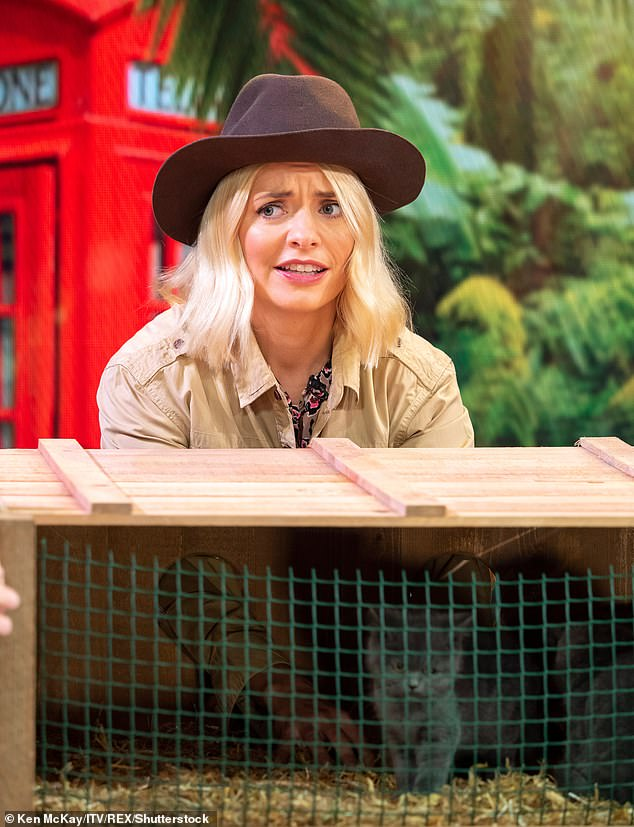 Timings:Ant is expected to film Britain's Got Talent early next year, when filming for the auditions start. But as Dec will be shooting I'm A Celebrity! with Holly Willoughby (pictured) in Australia until December, the duo are allegedly keen to sort out their timetable now