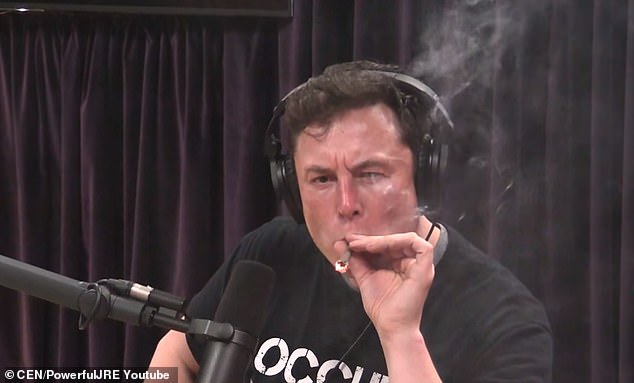 Elon Musk pictured smoking marijuana offered by the Joe Rogan Experience podcast host, causing shares in his company to fall