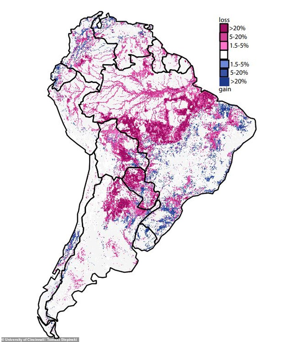 Pictured is a map of forest losses (red) and gains (blue) in South America during 1992 to 2015. Different shades show the magnitude of losses and gains.The map does not draw any inferences about what the next 24 years might bring but demographics suggest our footprint will only get bigger