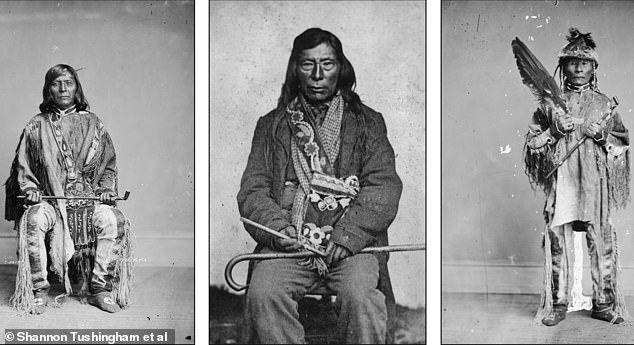 Nez Perce tribe members can be seen holding tobacco pipes in the images above, all from the late 1800s. These pipes are post-contact-era elbow pipes