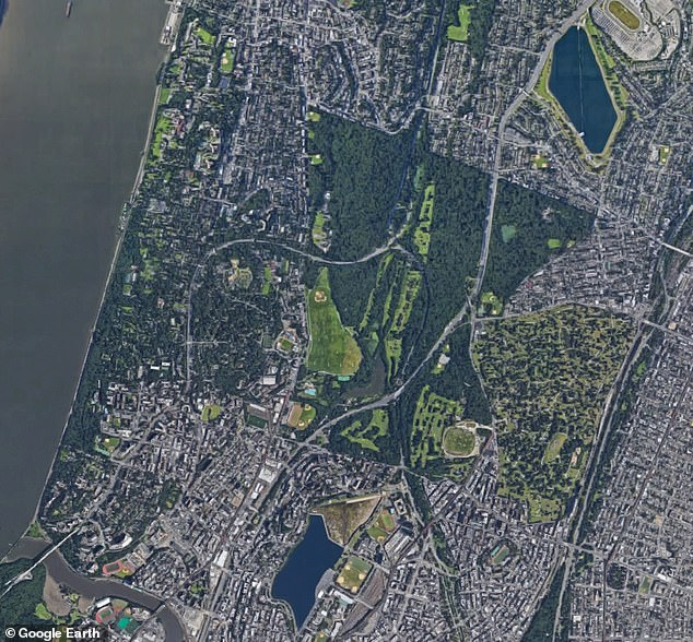 Aerial view of parks in the Bronx, including Van Cortlandt Park. Researchers carrying out a huge survey of New York City 's trees found there are over 5 million 'forested natural areas' along with 666,000 street trees.