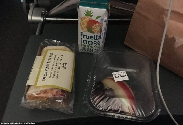 Economy provisions: Sadie discovered a vegetarian wrap, a pot of fruit and tropical juice inside her paper bag