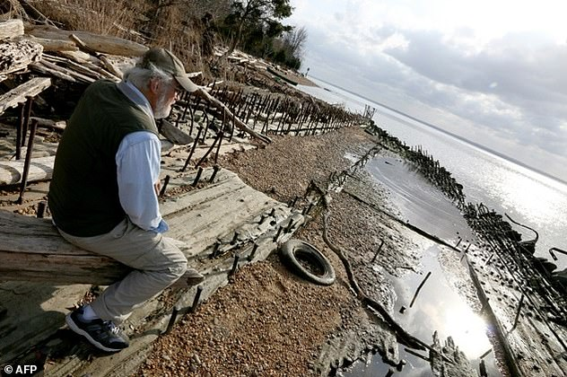 Marine archaeologist Don Shomette sits on the remains of a decaying sunken vessel left over from World War I in Mallows Bay near Nanjemoy, Maryland on November 17, 2015