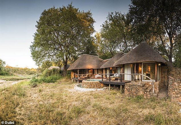 Mr Javid was yesterday packing his bags at a £840 per person per night resort (pictured) in Kruger National Park to race to London for a series of emergency Whitehall meetings