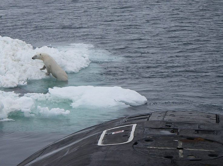 After exploring the deck the polar bear swims away and pulls back up onto some ice in the waters north of Norway's islands