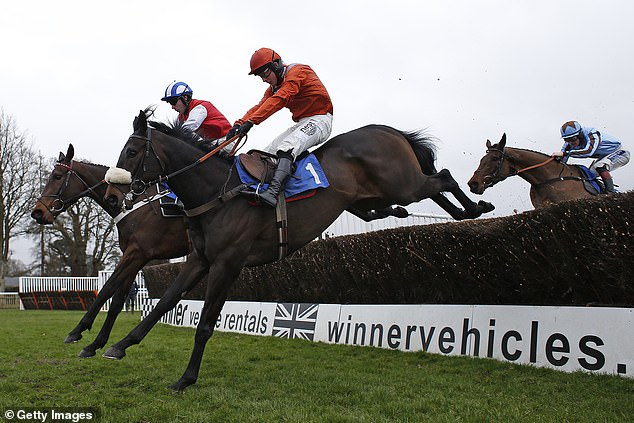 The champion jockey was unseated at the start of the 'Goodwin Racing Call 08000 421 321'