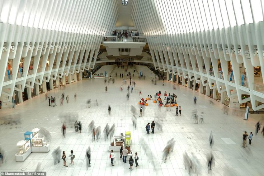The Oculus in Lower Manhattan is a new transport hub that serves the area around the World Trade Center complex in the Financial District. It was designed by Santiago Calatrava and it is meant to resemble a child releasing a dove. It opened in 2016, replacing the former transport hub that was destroyed in 9/11