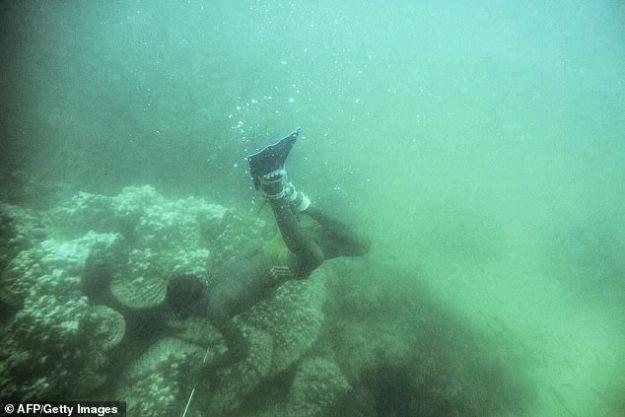 Le peuple Moken, surnommé «les gitans de la mer», est surtout connu pour ses incroyables talents de plongée en apnée. Sur la photo, un pêcheur moken à la recherche de poissons à lancer dans les eaux de l'archipel de Myeik, au large de la côte sud du Myanmar