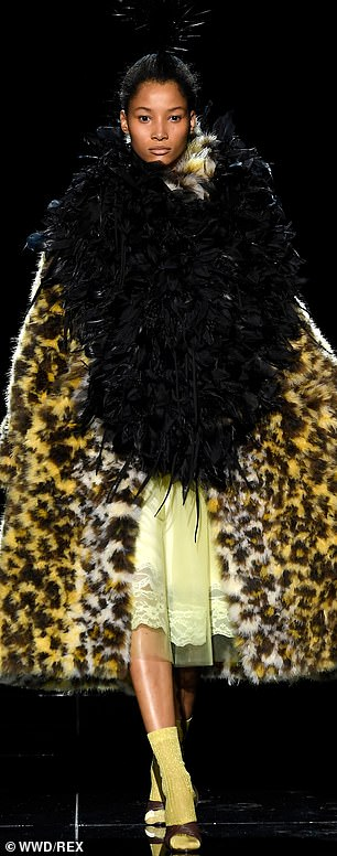 Work: A model stormed down the catwalk in an animal print fur coat