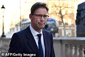 Defence minister Tobias Ellwood suggested Mrs May could announced a Brexit delay herself, saying: