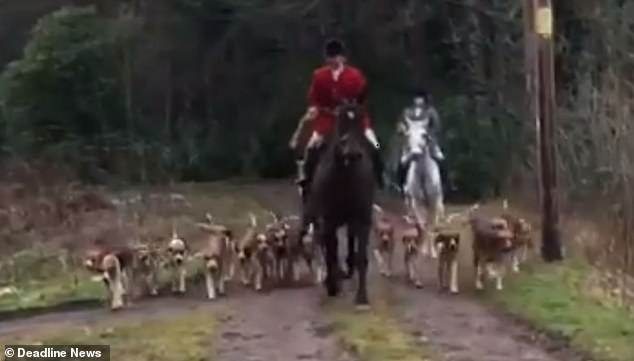 A fox hunter surrounded by dogs approaches saboteurs who are filming from the dirt track