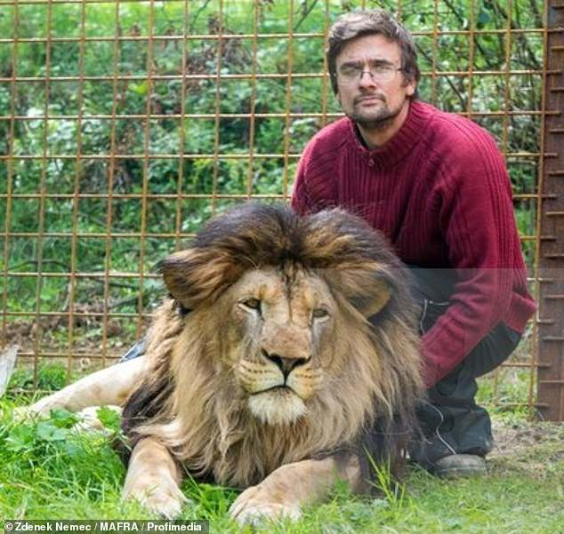 Michal Prasek was  mauled to death by a pet lion he kept illegally caged in his back garden in the Czech Republic