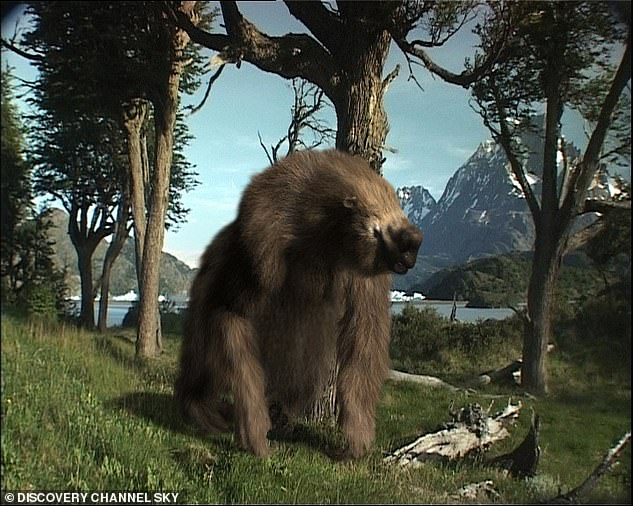 Analysis of the enormous 20 foot tall beast found it was killed and butchered near a swamp in Patagonia. Researchers say the discovery offers 'definitive evidence' humans were hunting and butchering giant ground sloths