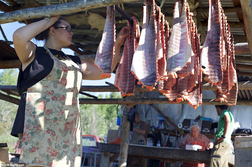 Salmon carcases are hung and left to dry in the summer sun. The fish is prepared in a number of ways along the Yukon