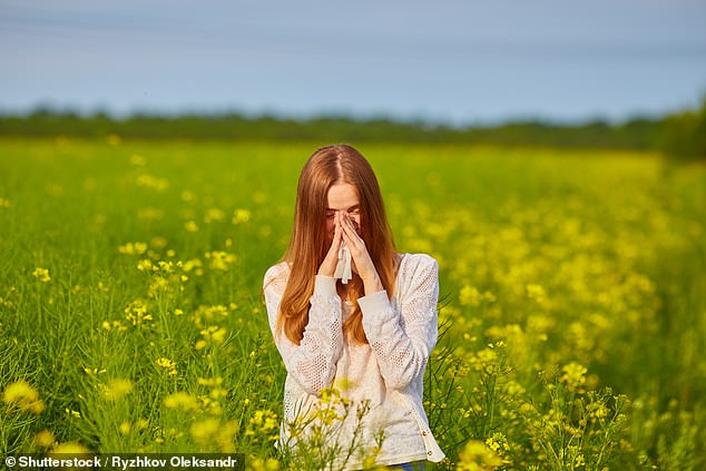 New research suggests sufferers may be significantly less likely to develop certain cancers than those who breeze through the season unaffected by pollen-induced misery [File photo]