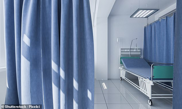Privacy curtains are commonly contaminated with multidrug-resistant organisms (MDROs) that can spread to patients, the researchers warned (stock)