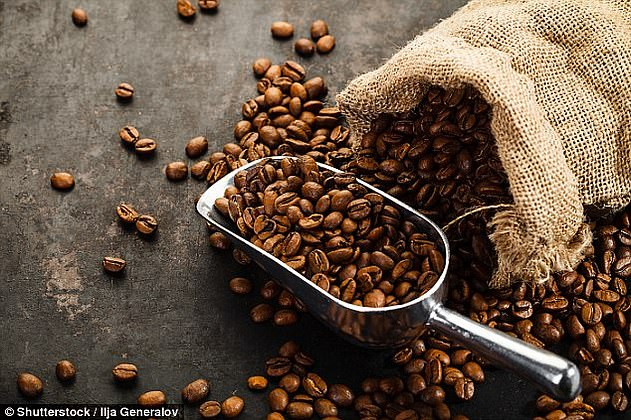 Mr Castillo noted that the size of the beans can have an impact on the flavor of the coffee when it is brewed (stock image)