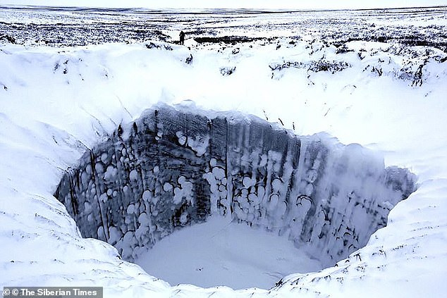 'Methane bombs' found locally could further aggravate the problem with by accelerating temperature rises and therefore the spread of disease. After the explosion they lead to the formation of bizarre Arctic craters. Pictured is a crater formed by a recent permafrost explosion in the Russian arctic